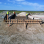 Bentonite Plant Construction